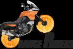 orange riders