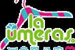 curatatorie bucuresti Laumeras