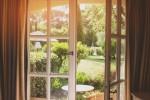 gradina-fereastra